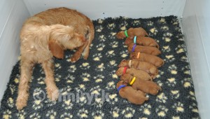 4 days old, all present and correct